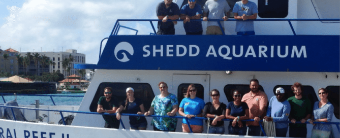 December 2016 Nassau grouper research team