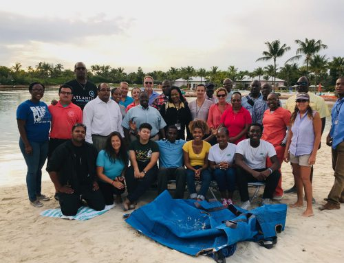 PIMS Joins The Bahamas Marine Mammal Stranding Network